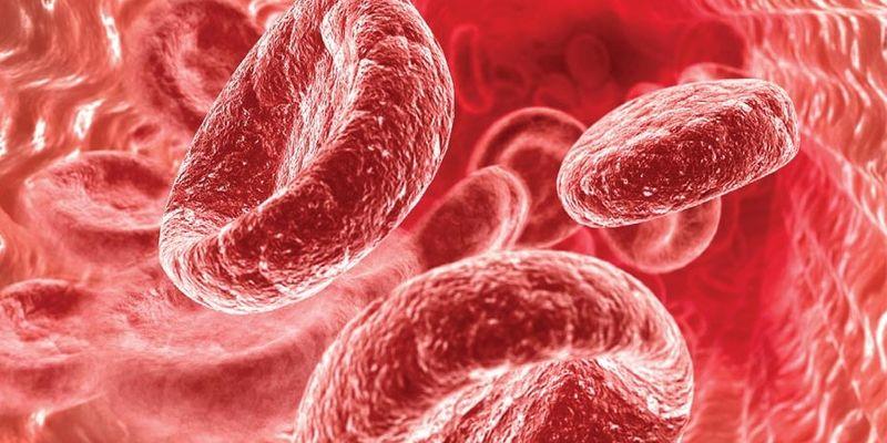 Рецепты, которые помогут повысить гемоглобин