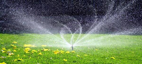 3 причины заказать системы полива газона на сайте