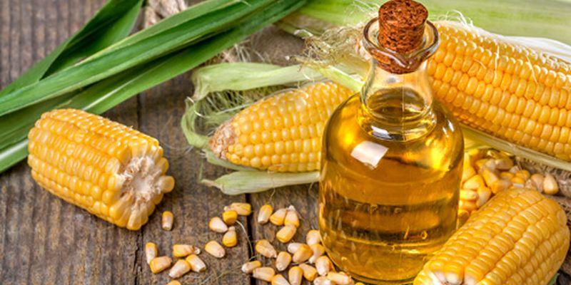 Кукурузное масло поможет существенно снизить уровень холестерина