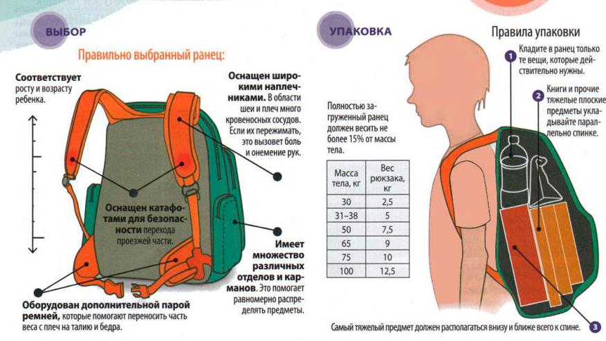 Как подобрать ребенку школьный рюкзак?