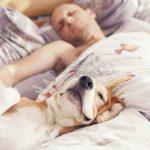 [:ru]Медики рассказали о причинах ночной потливости[:uk]Медики розповіли про причини нічної пітливості[:]