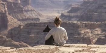 Каністерапія: як собака лікує людину
