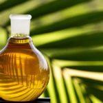[:ru]ЕС стремится ограничить поставки пальмового масла[:uk]ЄС прагне обмежити поставки пальмової олії[:]