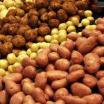 [:ru]Украина уже собрала почти 22,2 млн тонн картофеля[:uk]Україна вже зібрала майже 22,2 млн тонн картоплі[:]