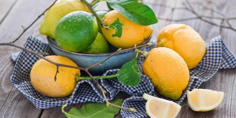 Медики назвали опасные свойства лимона