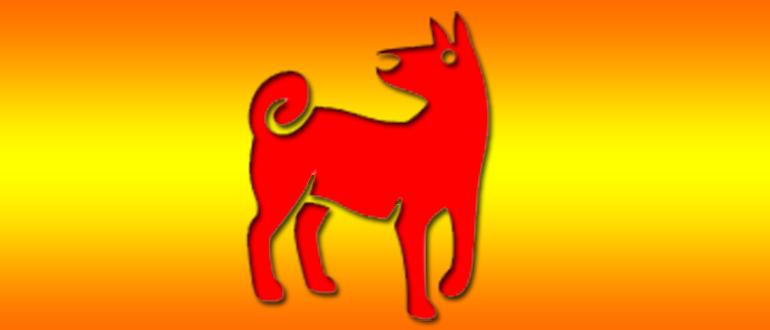 Год Собаки Гороскоп