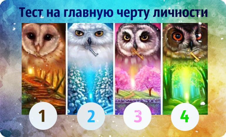 Тест на характер выбери-сову