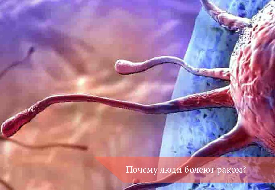 Почему люди болеют раком?