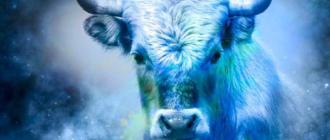 Когда наступит 2021 год быка по китайскому календарю