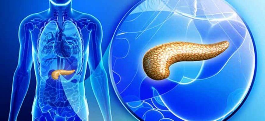 Самые лёгкие и самые тяжёлые жиры для печени и поджелудочной железы